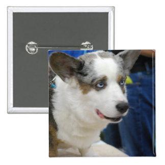 Cardigan Welsh Corgi Dog  Button
