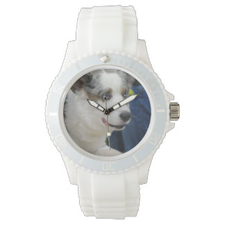 Cardigan Welsh Corgi Dog Watch
