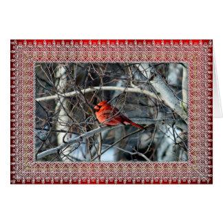 Cardinal 3926 Christmas Card
