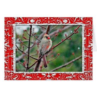 Cardinal 4539 Horizontal Card Christmas Card