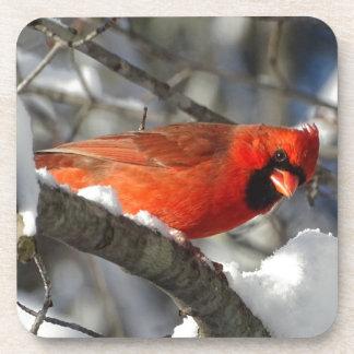 Cardinal Beverage Coaster