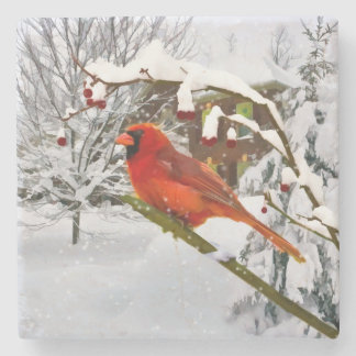 Cardinal Bird in the Snow Stone Coaster