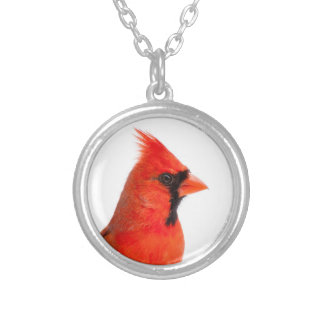 Cardinal Bird Silver Plated Necklace
