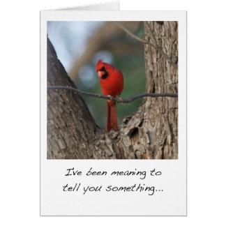 Cardinal Bird Valentine's Day Card