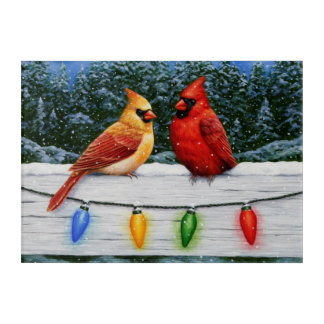 Cardinal Birds and Christmas Lights Acrylic Print