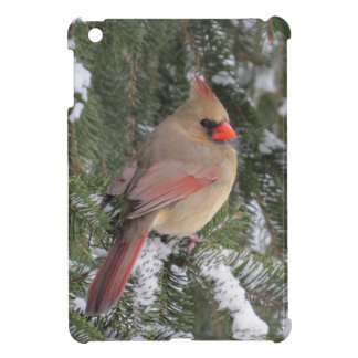 Cardinal Case For The iPad Mini