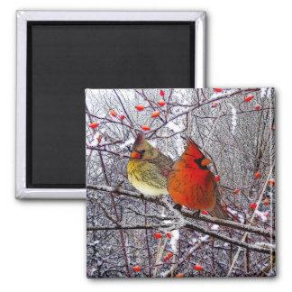 Cardinal Christmas Magnet
