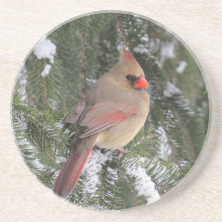 Cardinal Coaster