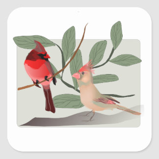 Cardinal Couple in the Tree Branches Square Sticker