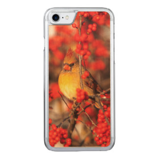 Cardinal female and red berries, IL Carved iPhone 7 Case