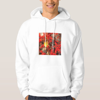 Cardinal female and red berries, IL Hoodie