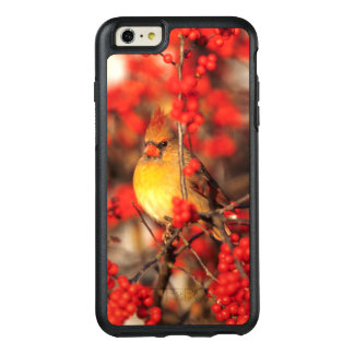 Cardinal female and red berries, IL OtterBox iPhone 6/6s Plus Case