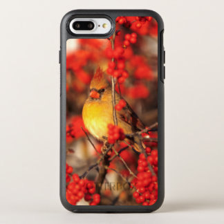 Cardinal female and red berries, IL OtterBox Symmetry iPhone 8 Plus/7 Plus Case