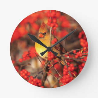 Cardinal female and red berries, IL Round Clock