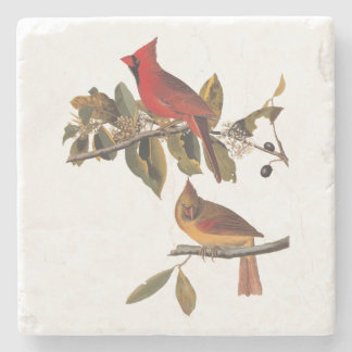 Cardinal Grosbeak Bird Pair in Wild Almond Tree Stone Coaster