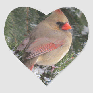 Cardinal Heart Sticker