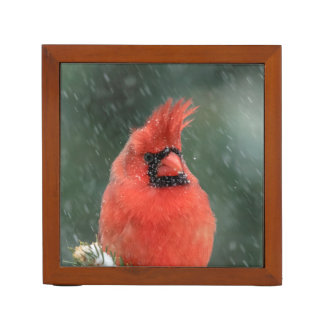 Cardinal in a pine tree during a snow storm desk organiser