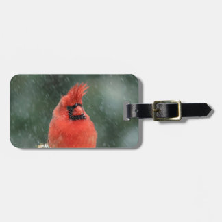Cardinal in a pine tree during a snow storm luggage tag