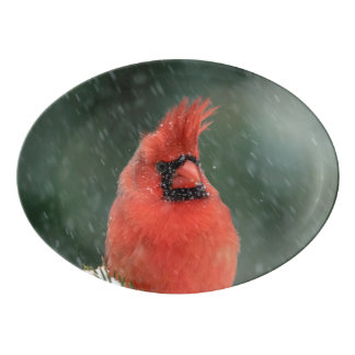Cardinal in a pine tree during a snow storm porcelain serving platter