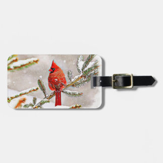 Cardinal in a pine tree luggage tag