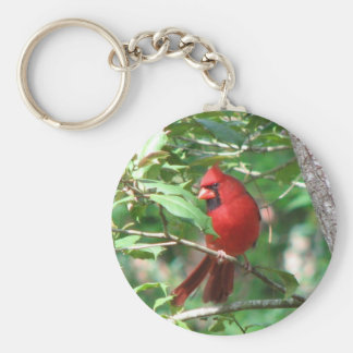 Cardinal in Holly Key Ring