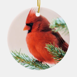 Cardinal in Snow Dusted Fir Ceramic Ornament
