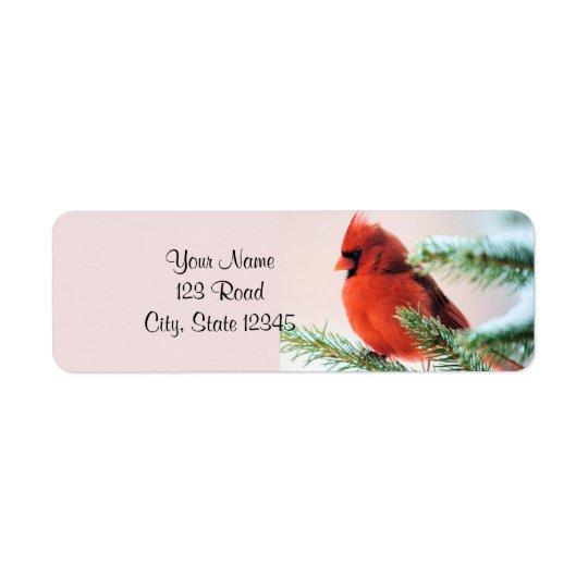 Cardinal in Snow Dusted Fir Return Address Label