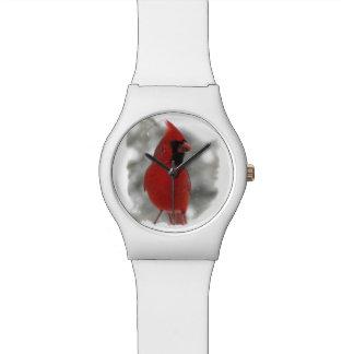 Cardinal in Snow Watch