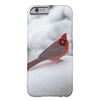 Cardinal in the Snow 6243 Barely There iPhone 6 Case