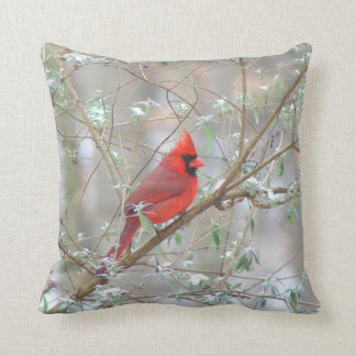 Cardinal in winter cushion