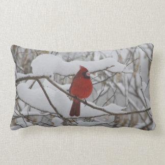 Cardinal in winter snow pillow