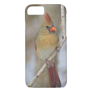 Cardinal iPhone Case (Female)