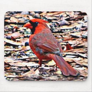Cardinal (Male) Mouse Pad