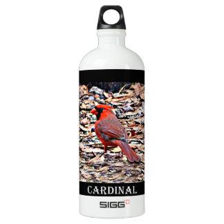 Cardinal (Male) Water Bottle