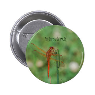 Cardinal Meadowhawk Dragonfly button