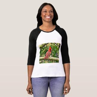 Cardinal on a limb Women's Raglan Tee Shirt