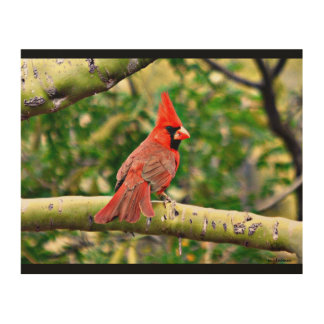 Cardinal on a Limb Wood Wall Art