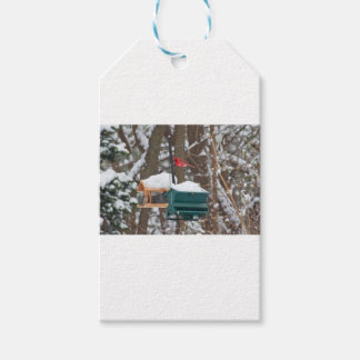 Cardinal on Birdfeeder Gift Tags