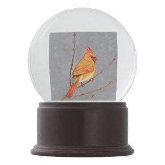 Cardinal on Branch Snow Globe