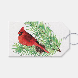 Cardinal on Evergreen / Personalized Gift Tag