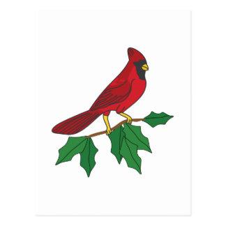 Cardinal On Holly Postcard