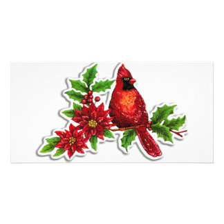 cardinal on holly vine personalized photo card