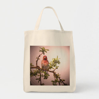 Cardinal organic grocery tote bag