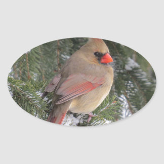 Cardinal Oval Sticker