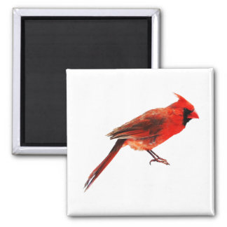 Cardinal(s) Magnet