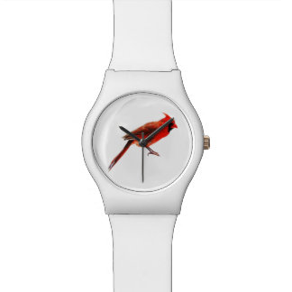 Cardinal(s) Watch