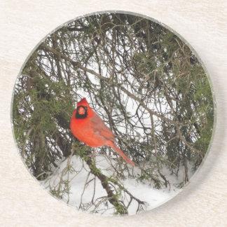 Cardinal Sandstone Coaster