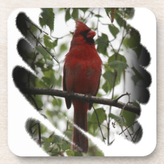 Cardinal Swerl Drink Coaster