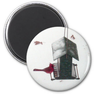 Cardinal Winter Birdhouse Magnet