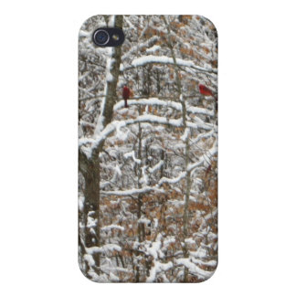 Cardinals in winter case for iPhone 4